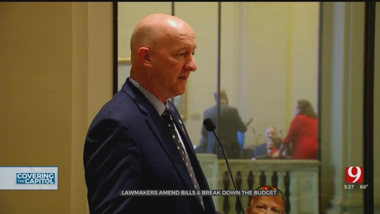Capitol Week In Review: State Lawmakers Amend Bills, Break Down Budget