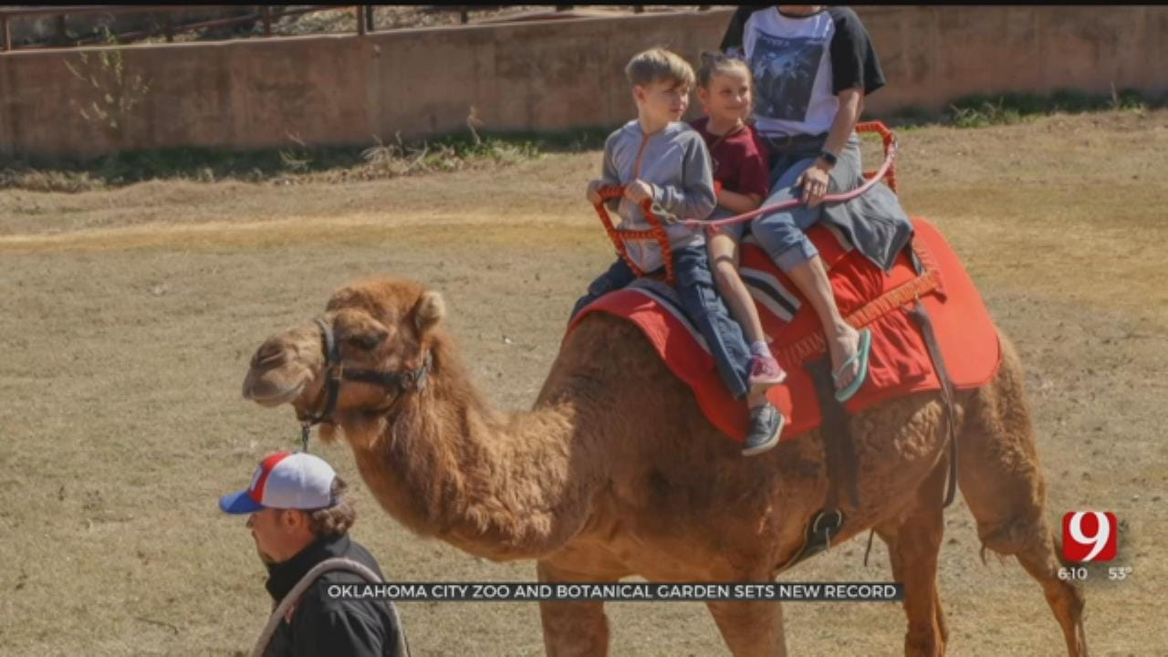 OKC Zoo And Botanical Garden Sets New Record