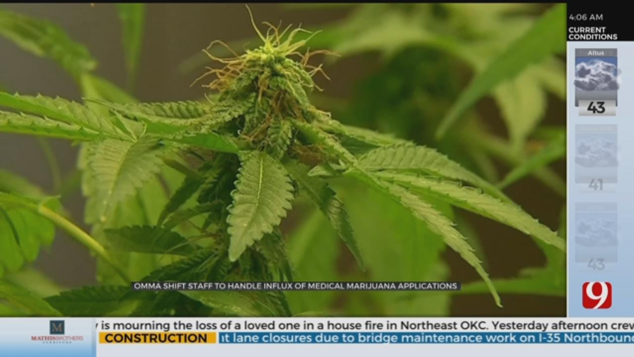 OMMA Shift Staff To Handle Influx Of Medical Marijuana Applications