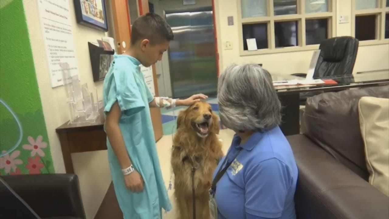 Therapy Dogs Help Young Patients At Texas Hospital