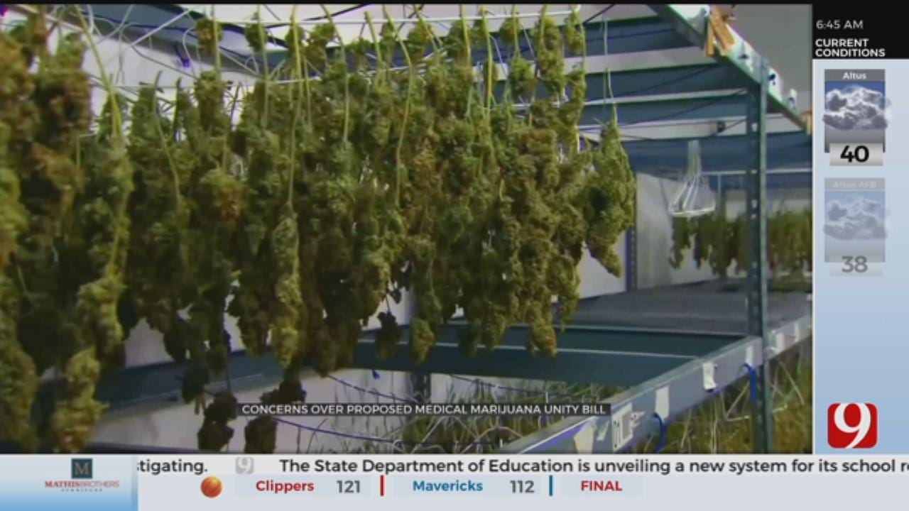 Cannabis Business In Limbo Without Banking Regulations