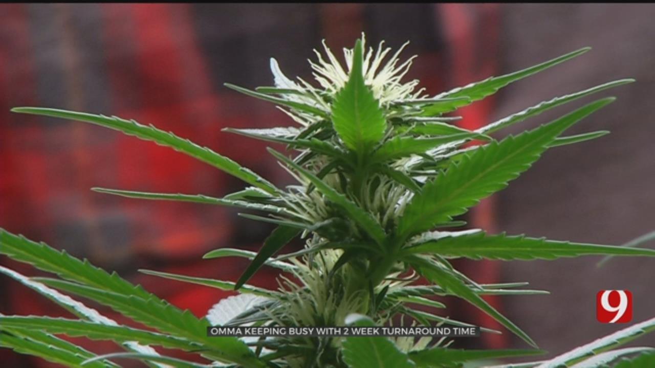 Stillwater Approves More Medical Marijuana Dispensaries