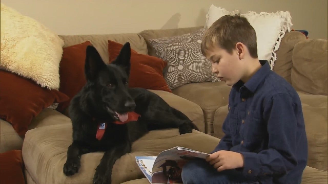 Stranger Drives 2,300 Miles To Reunite Boy Recovering From Surgery With His Dog