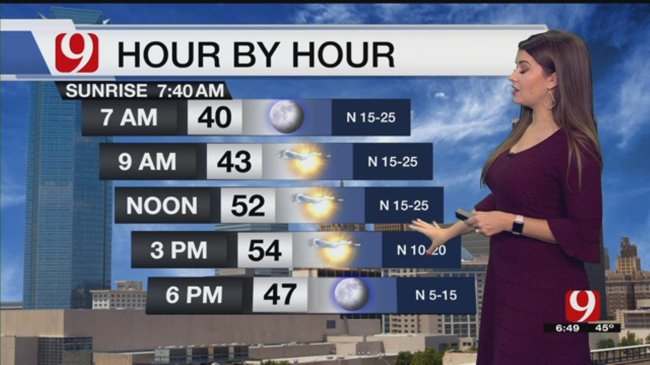 Lacey's Bus Stop Forecast