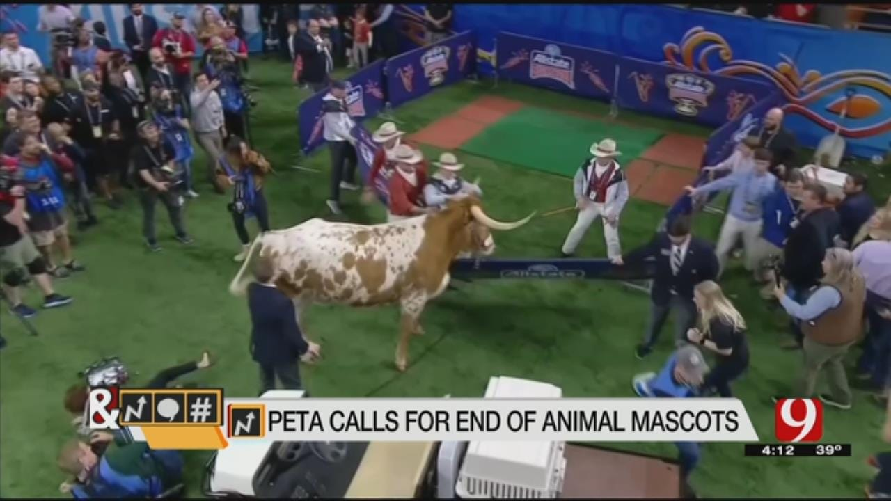 Trends, Topics & Tags: PETA Vs. Sugar Bowl