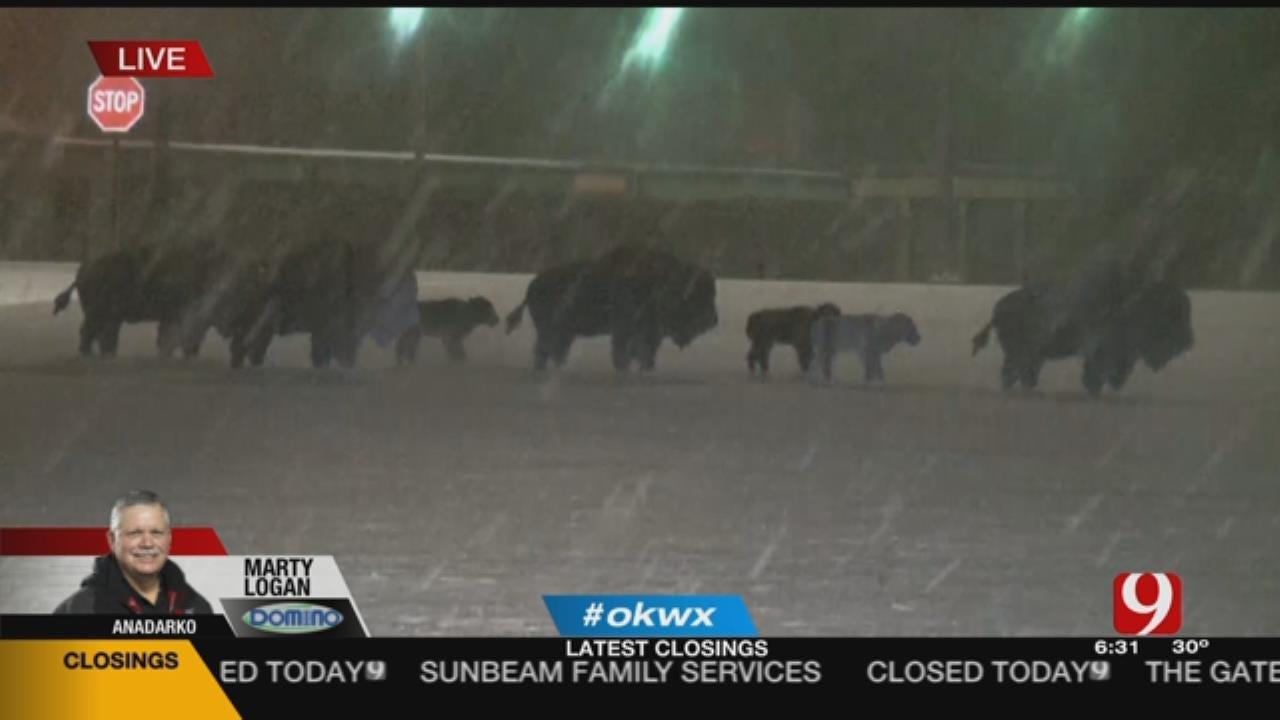 Heavy Snowfall Falls Near Southwest Oklahoma