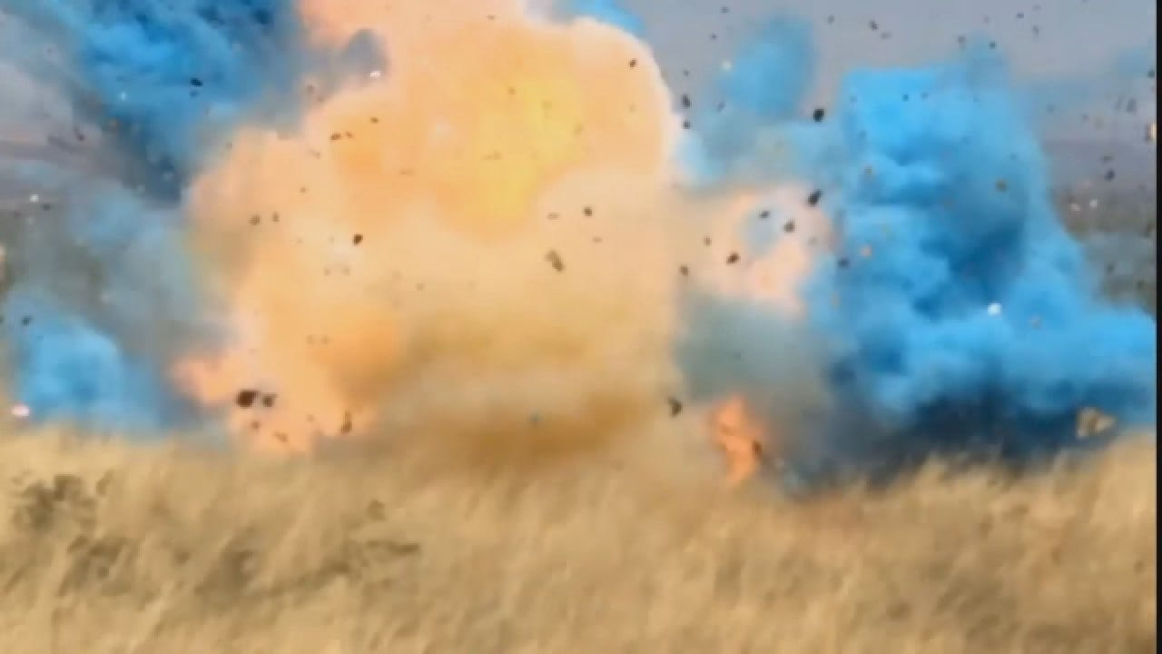 Video Shows How Gender-Reveal Stunt Sparked Wildfire