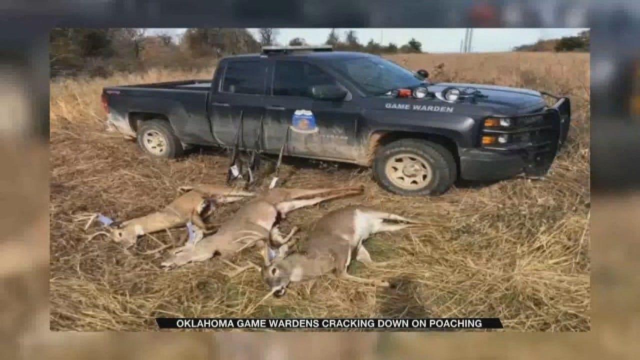 Oklahoma Game Wardens Cracking Down On Deer Poaching