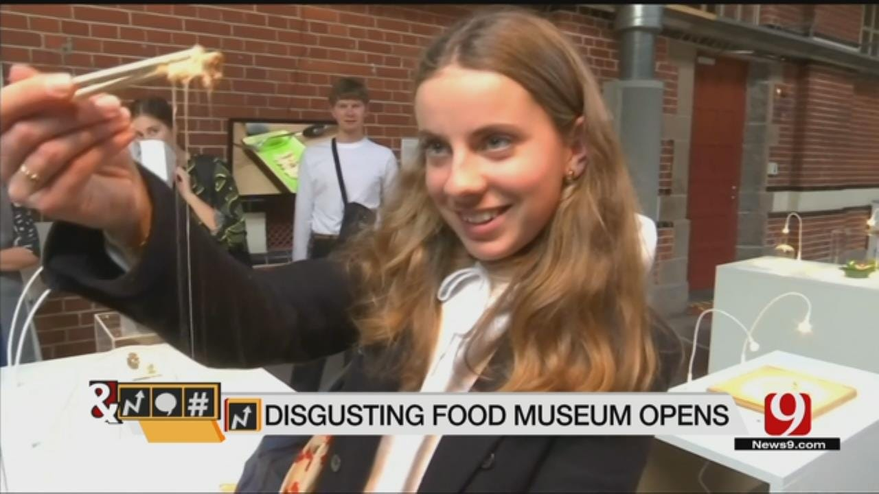 Trends, Topics & Tags: Disgusting Food Museum Opens