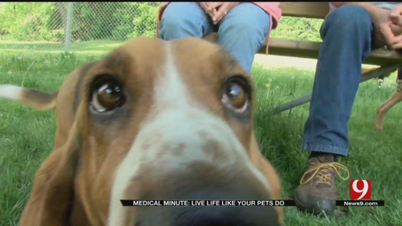 Medical Minute: Live Like Your Pets Do