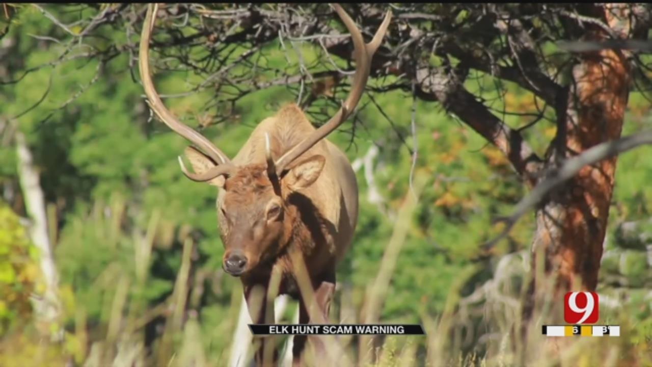 Suspect Accused Of Oklahoma Elk Hunting Scam