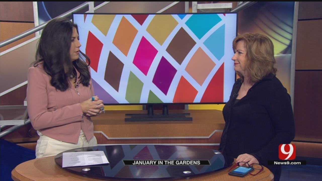 Myriad Gardens: January Events