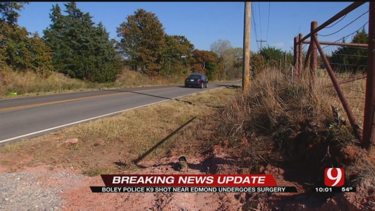 Police Investigating After K9 Officer Shot Near Edmond