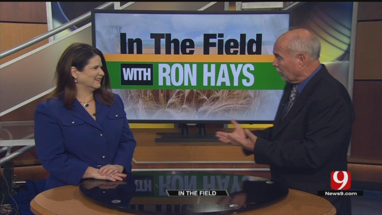 In The Field: Oklahoma Beef Council