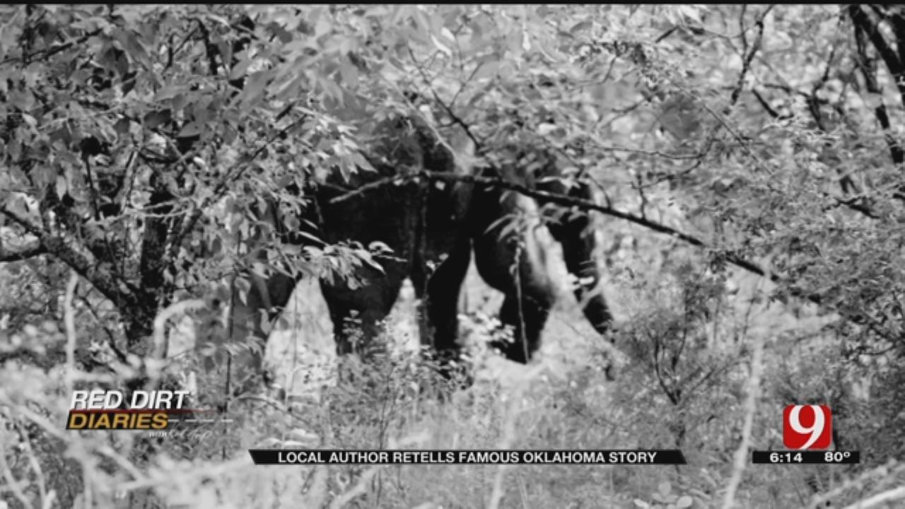 Red Dirt Diaries: Author Recalls Elephants' Adventure
