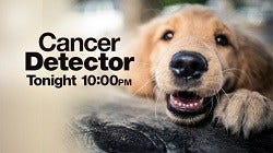 Dog Detector: Cancer-sniffing dogs