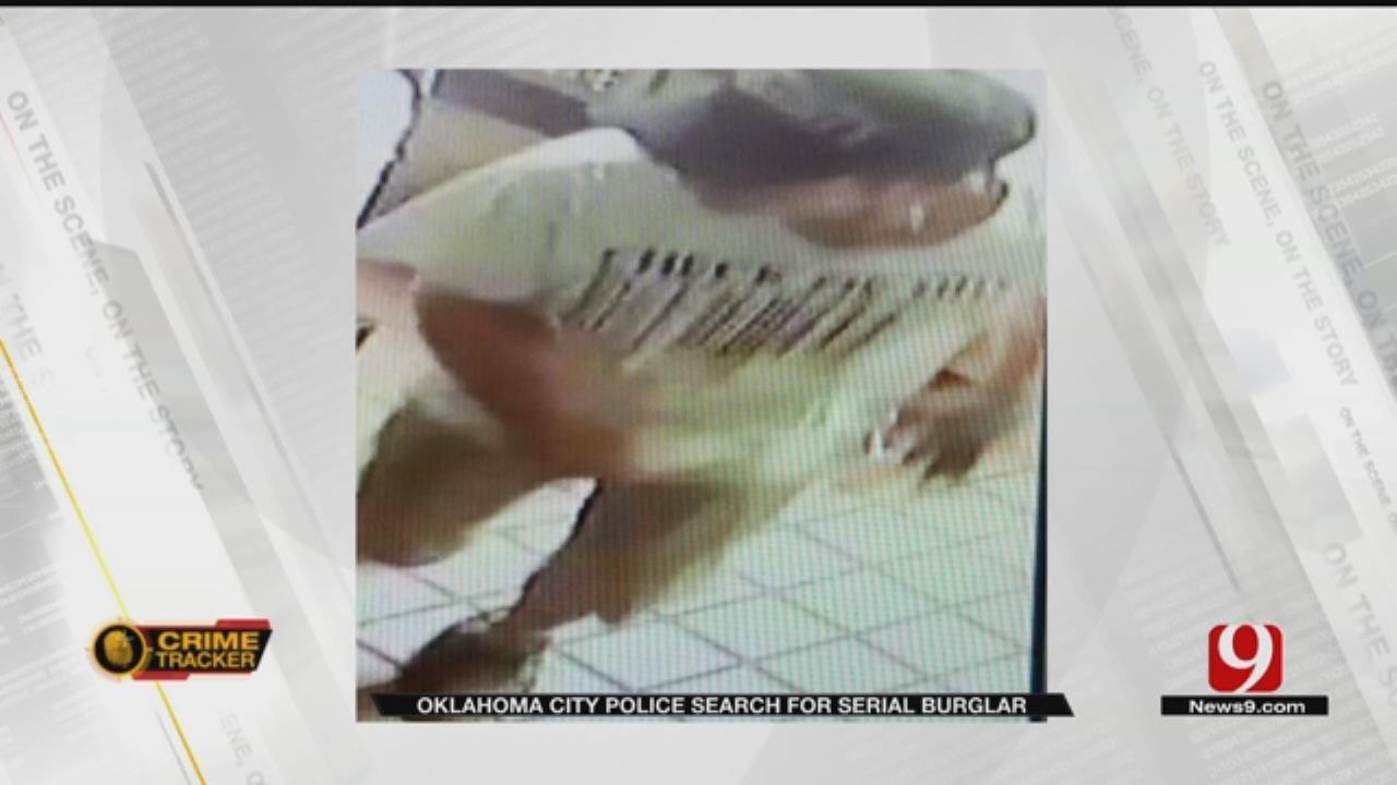 Serial Thief Suspected In 8 Metro Burglaries