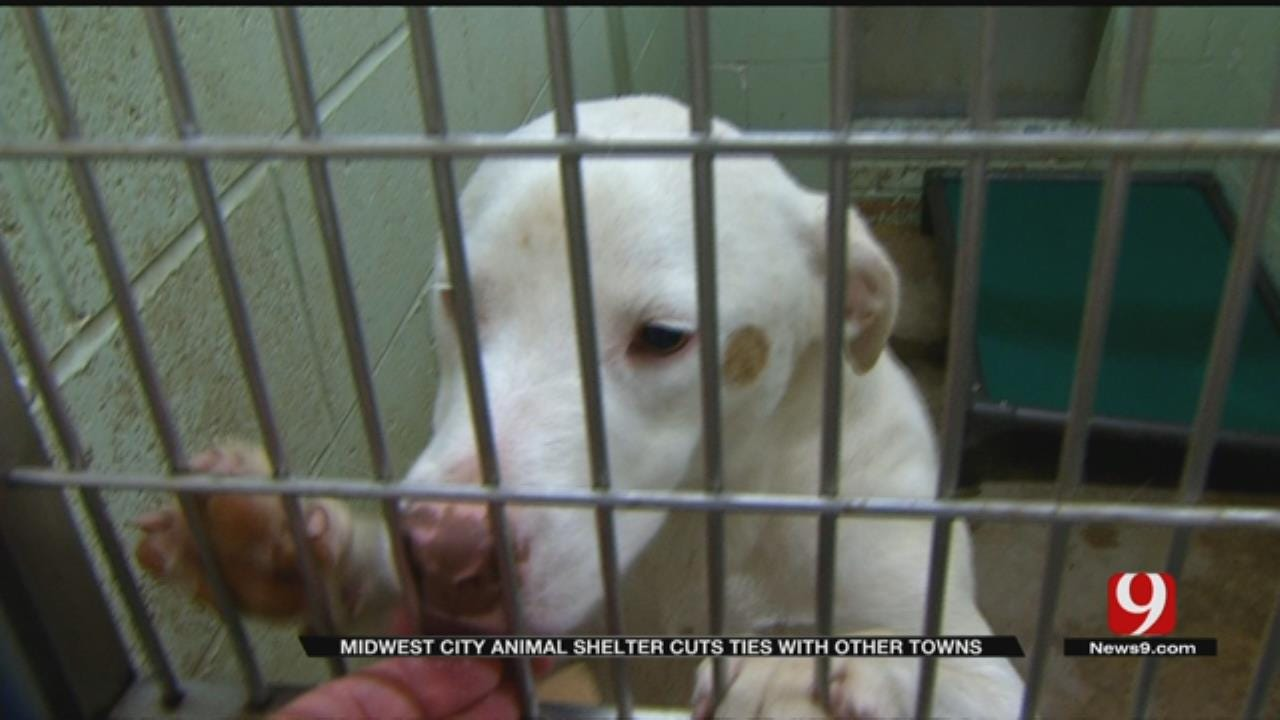 MWC Animal Welfare Cancels Services For Neighbor Communities