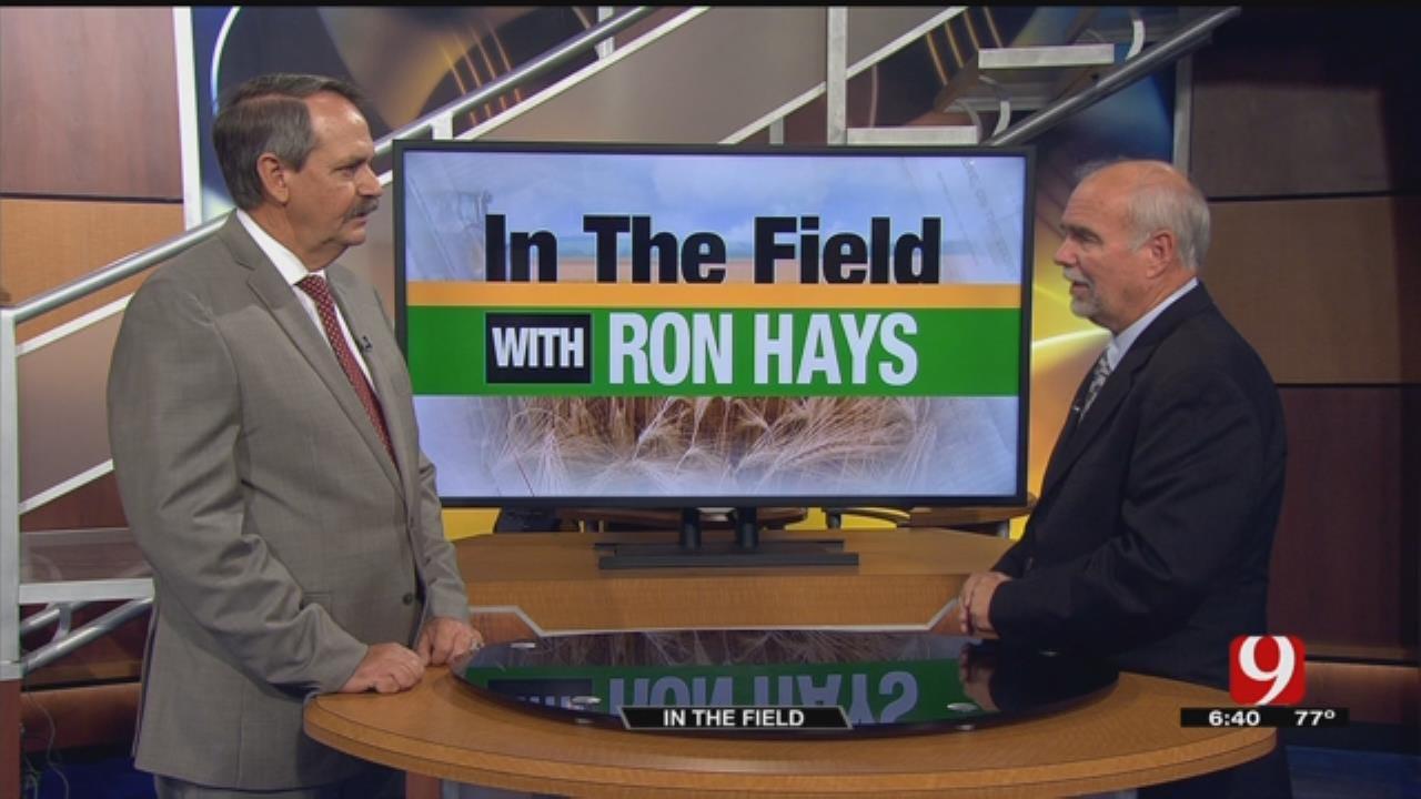 In The Field: Trey Lam