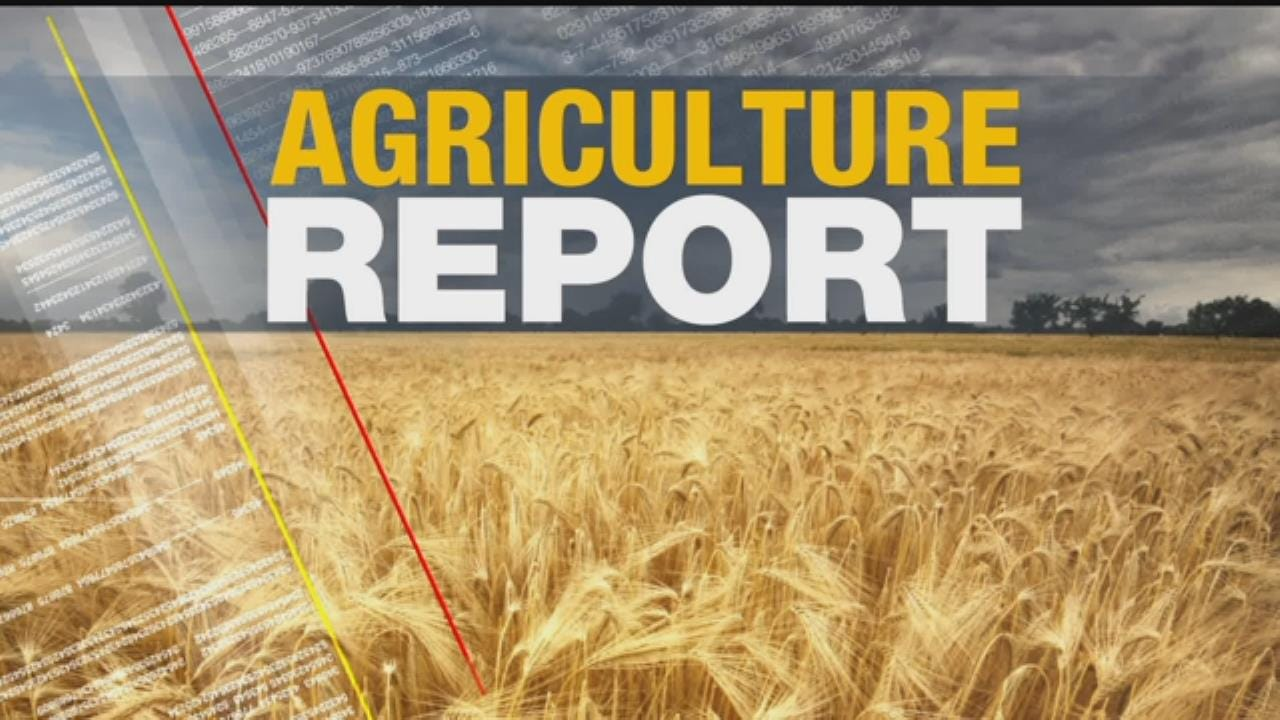 Ag Report: May 16, 2017