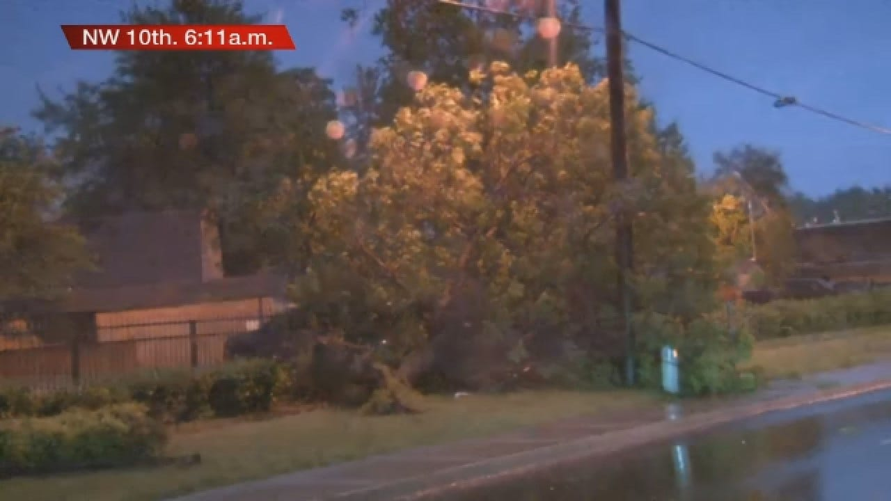 Storms Damage Trees And Powerlines ON NW 10th
