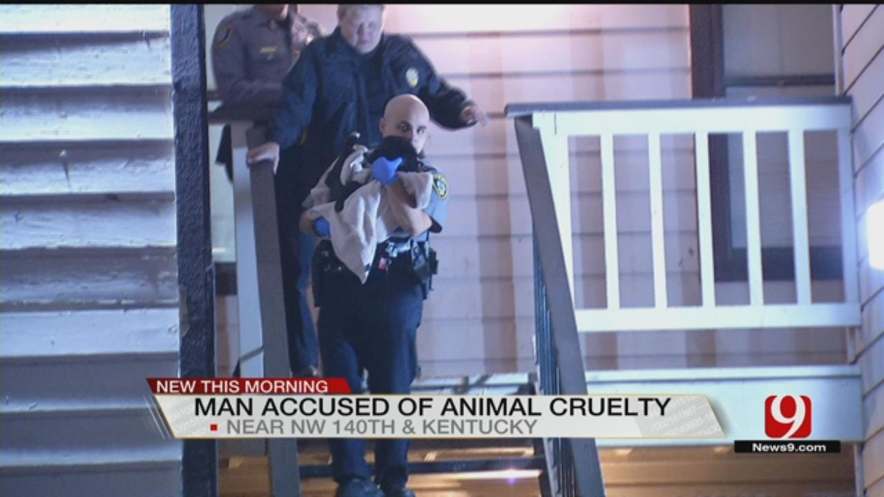 Oklahoma City Man Arrested For Severe Animal Cruelty