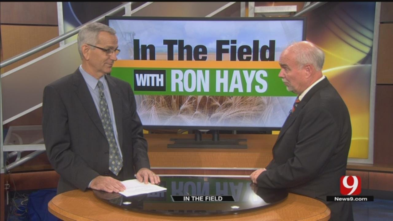 In The Field: Jim Reese