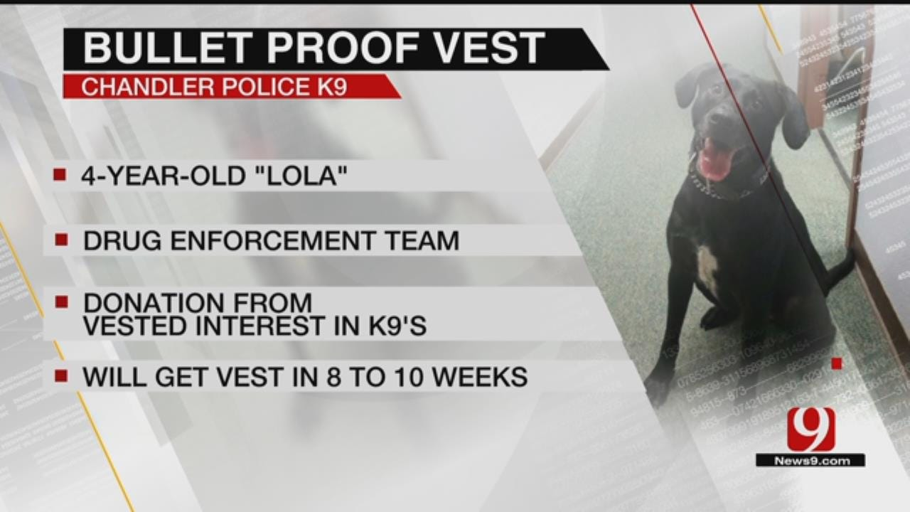 Lola Gets Ballistic Vest