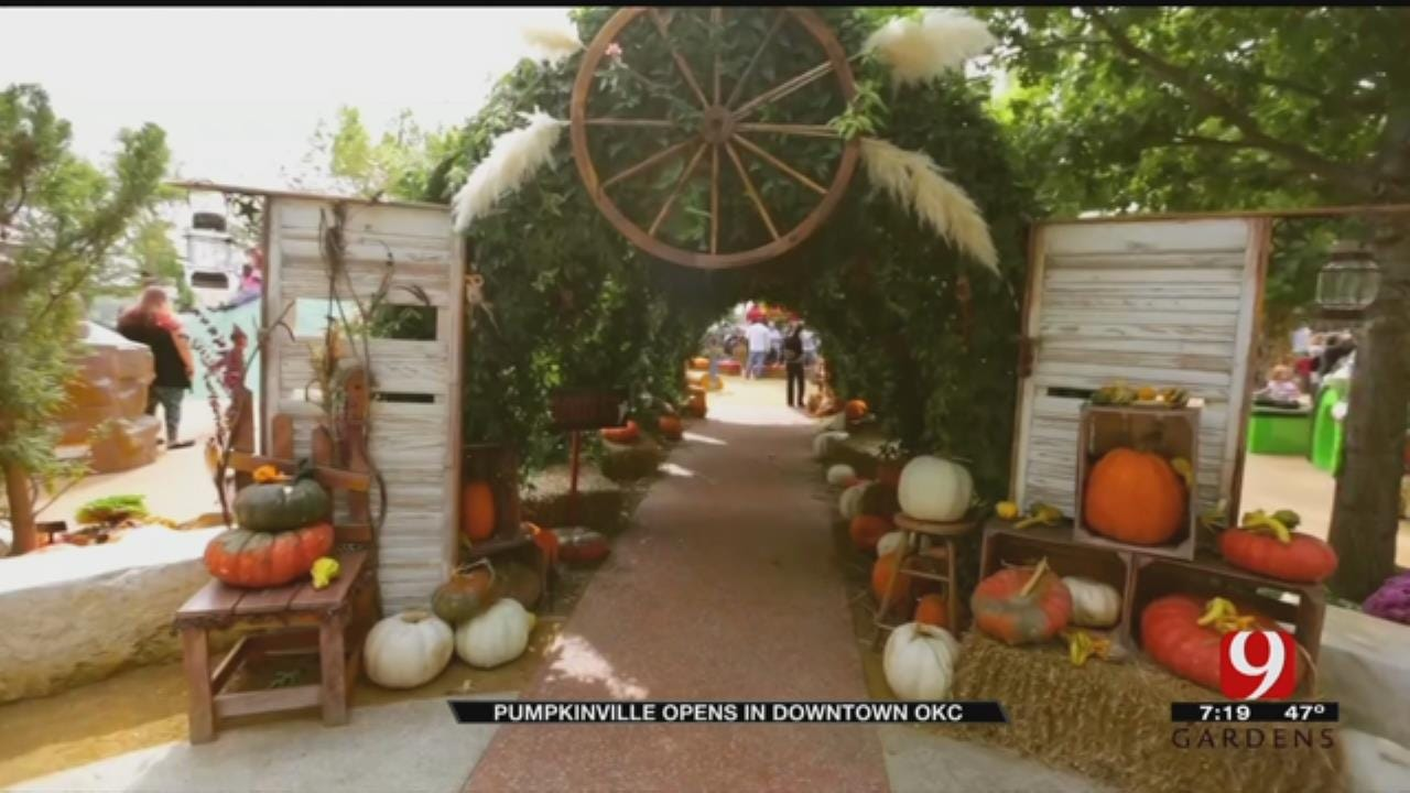 Pumpkinville Opens In Downtown OKC