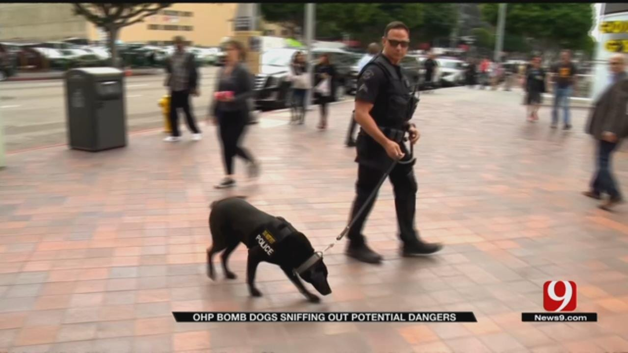 Increased Calls For Bomb Dogs Across Oklahoma