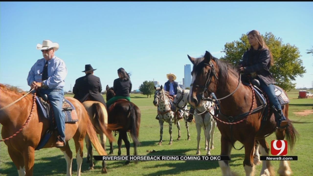 Unique Horse Park To Be Built In OKC