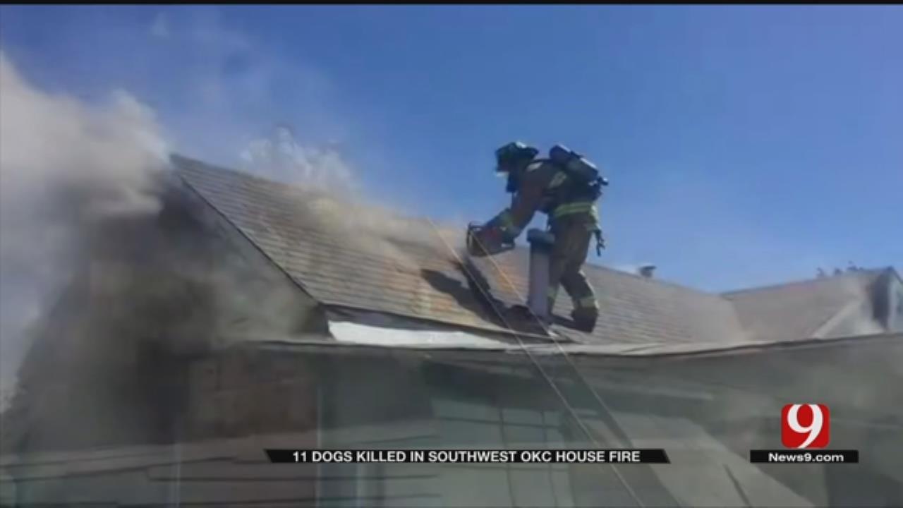 SW OKC House Fire Kills 11 Pets