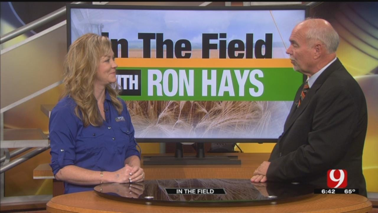 In The Field: Cathy Vaughan