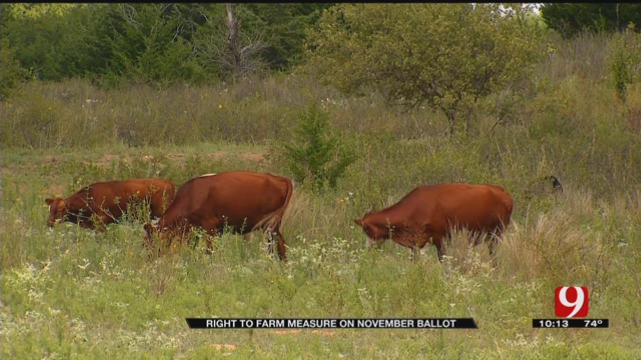 9 Investigates: Right To Farm Measure On November Ballot