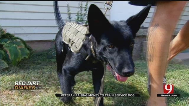 Army Veteran Raises Money To Train Service Dog