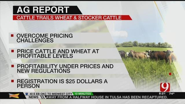 """AG REPORT: """"Cattle Trails Wheat and Stocker Cattle"""" conference Focusing On Pricing"""