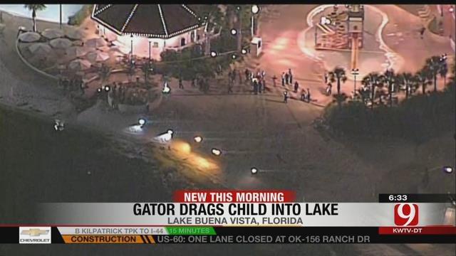 Alligator Drags Child Into Water At Disney Resort In Orlando