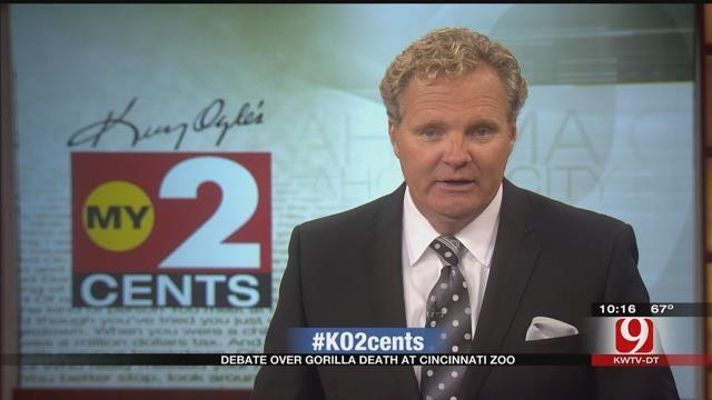 My 2 Cents: Debate Over Gorilla Death At Cincinnati Zoo