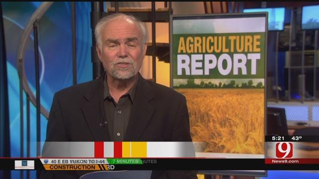 Agriculture Report: Big Event Coming To OKC