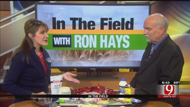 In The Field: Susan Allen With The Dairy MAX Organization