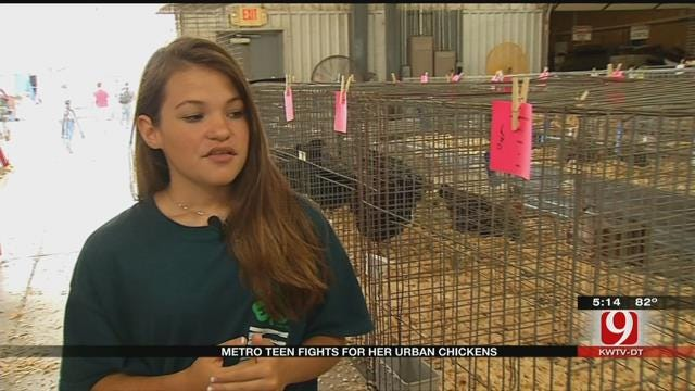 Metro Teen Fights For Her Urban Chickens