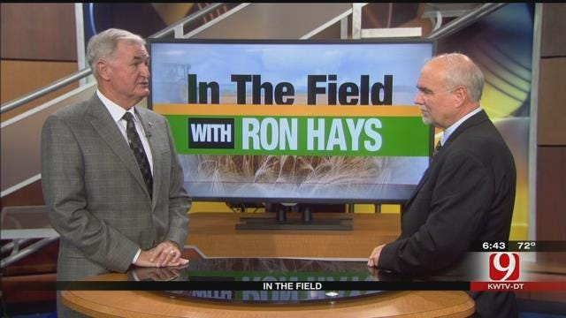 In The Field: Ron Sholar