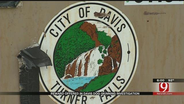 Humane Society Of U.S. Offers Reward In Davis Dog Skinning Investigation