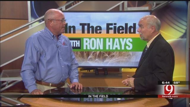 In The Field: Chuck Coffey