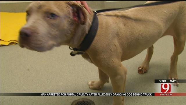 Police: OKC Driver Dragged Dog By Chain For Miles