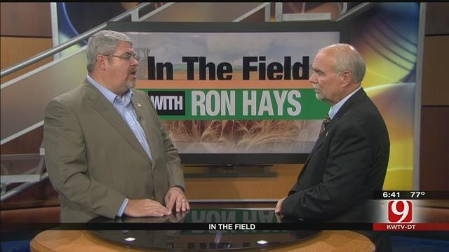 In The Field: Roy Lee Lindsey