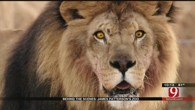 News 9 Goes Behind The Scene Of CBS's New Show 'Zoo'