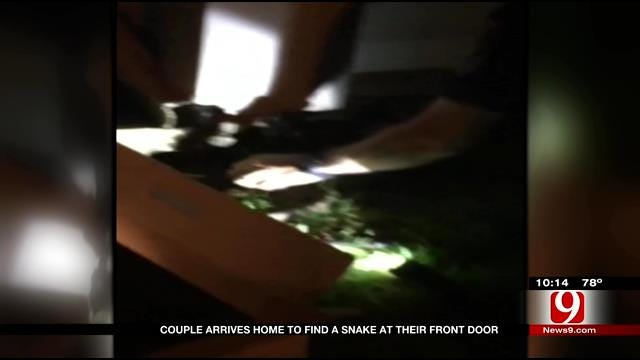 Norman Police Officer Takes On Large Snake