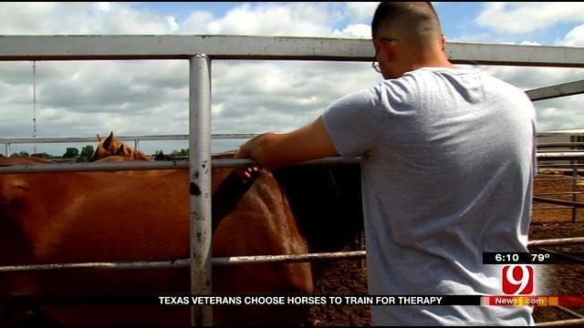 Wild Horses Help Tame PTSD In Pauls Valley