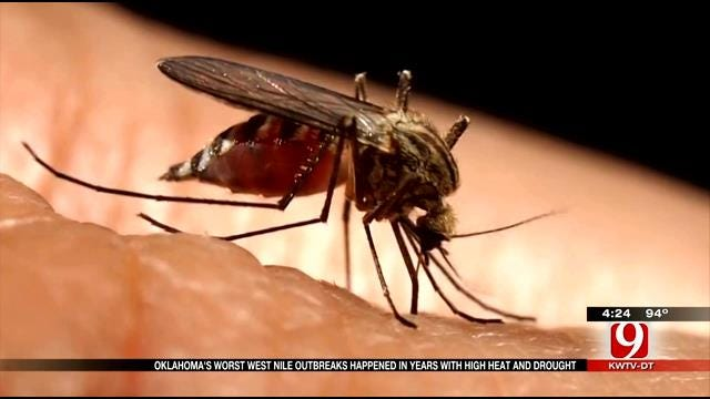 Medical Minute: West Nile Virus